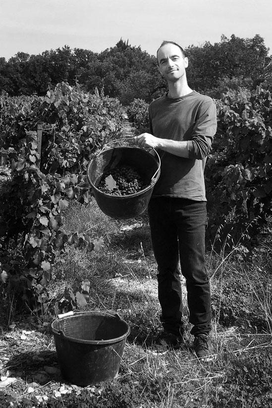 Portrait en noir et blanc de Christophe Requin, dirigeant du Domaine, la photographie a été prise dans les vignes du domaine, Christophe présente fièrement la vendange de l'année dans un seau