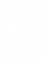 Logo HD du Domaine viticole Saint-Pierre d'Escarvaillac en Avignon